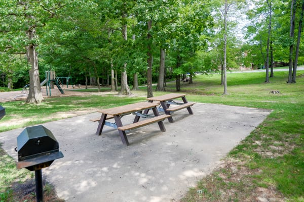 Picnic area a Taylor Park Apartment Homes in Nottingham, Maryland