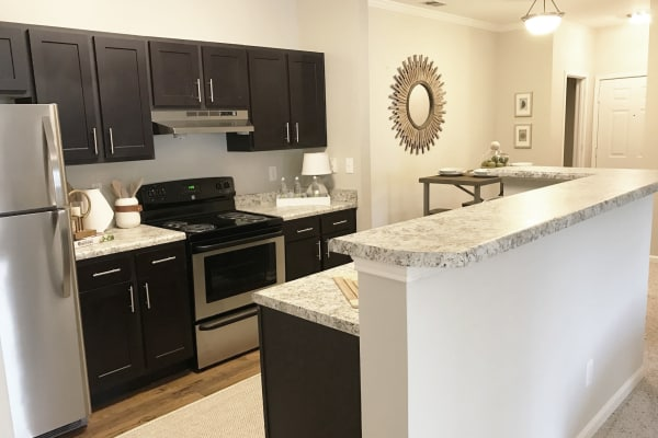 Spacious layouts and open floor plans at luxury apartments in Knoxville, Tennessee