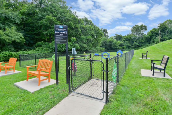 Our apartments offer a beautiful park at Wedgewood Hills Apartment Homes