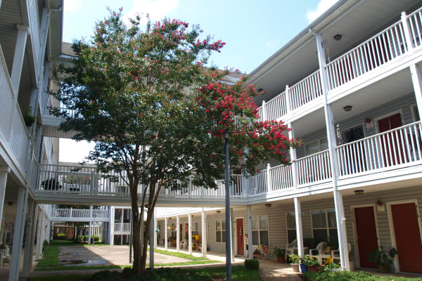 1 and 2 bedroom apartments at Chesapeake Crossing