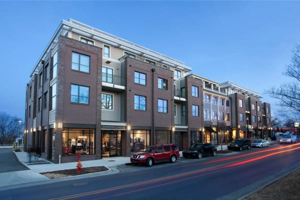 Pet friendly at 12 South Apartments in Nashville, Tennessee