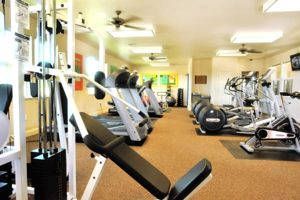 Fitness center with new equipment at Oak Meadow Apartments in Chico, California