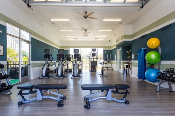 Fitness center at Springs at McDonough in McDonough