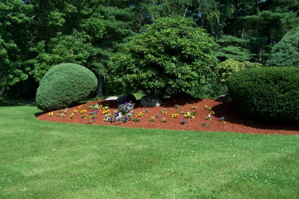 Beautiful landscaping at Westgate Arms Apartments in Salem, New Hampshire