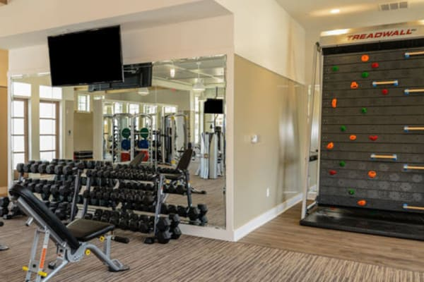 Fully equipped fitness center at Palm Bay Club in Jacksonville, Florida