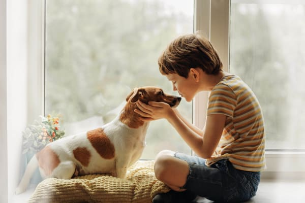 Child enjoying his new home with his dog at Cross Pointe Apartment Homes in Antioch, California