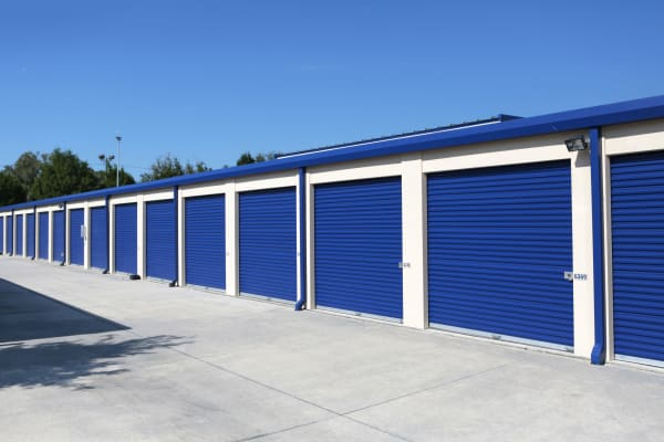 Storage units with purple doors at Midgard Self Storage in Lutz, Florida