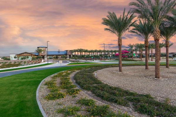 Master Plan Community Entry at Tavalo at Cadence in Mesa, Arizona