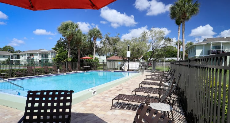 Ridgeview swimming pool in Seminole, Florida