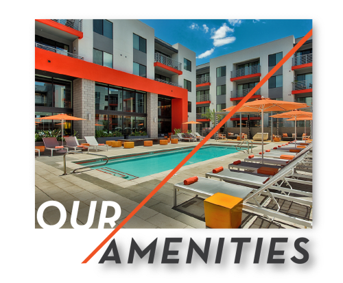 View Amenities at The TOMSCOT in Scottsdale, Arizona