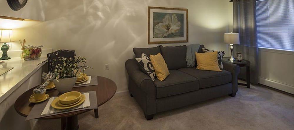 Living space inside of a Waltonwood Carriage Park home