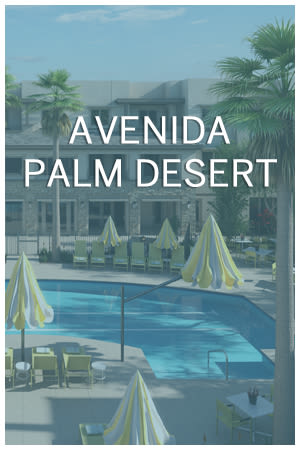 Palm Desert custom photo card
