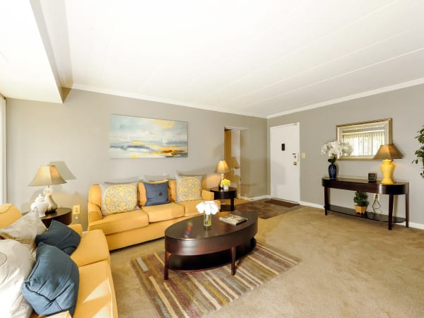 Living room area with a splash of yellow at Willowbrook Apartment Homes in Baltimore, MD