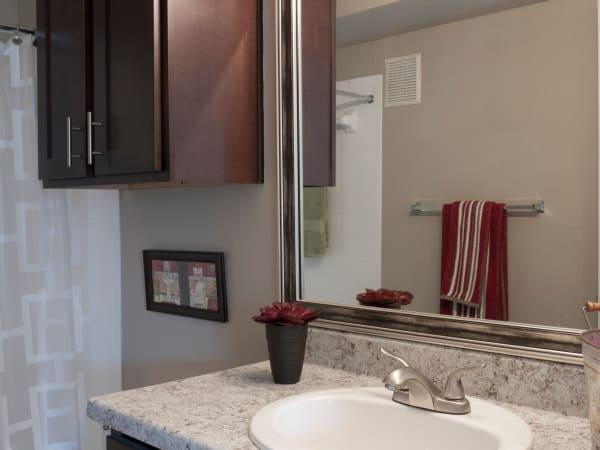 Greentree Apartments offers a bathroom in Carrollton, Texas
