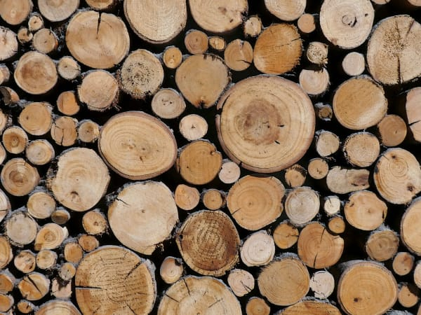 Stacked firewood at TAVA Waters in Denver, Colorado