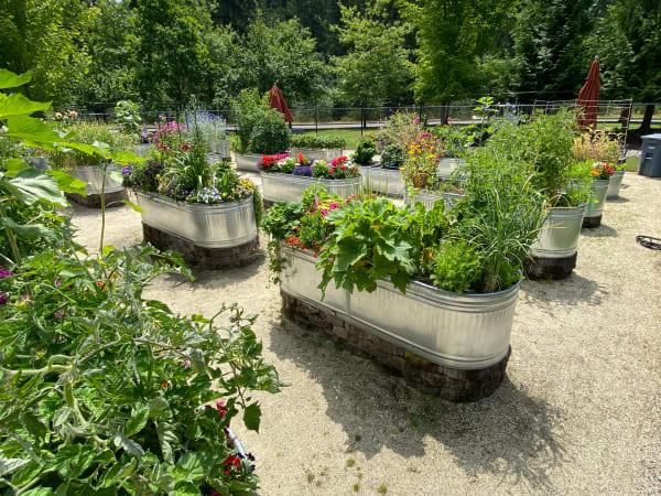Resident garden at Patriots Landing in DuPont, Washington.