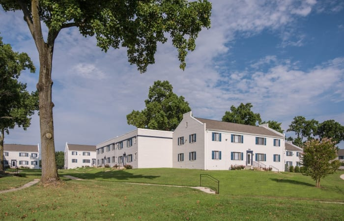 Old-growth trees and resident buildings atop grassy hill at The Residences at Silver Hill in Suitland, MD