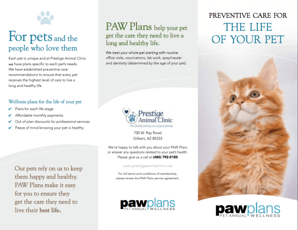 Paw Plans brochure in Gilbert