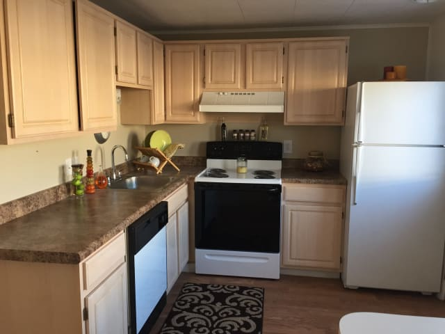 Kitchen with panda pattern appliances