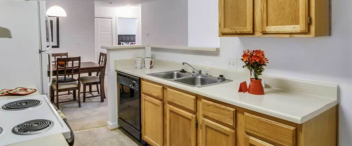 A kitchen with a stainless-steel sink at The Glenn's at Millers Lane in Henrico, Virginia