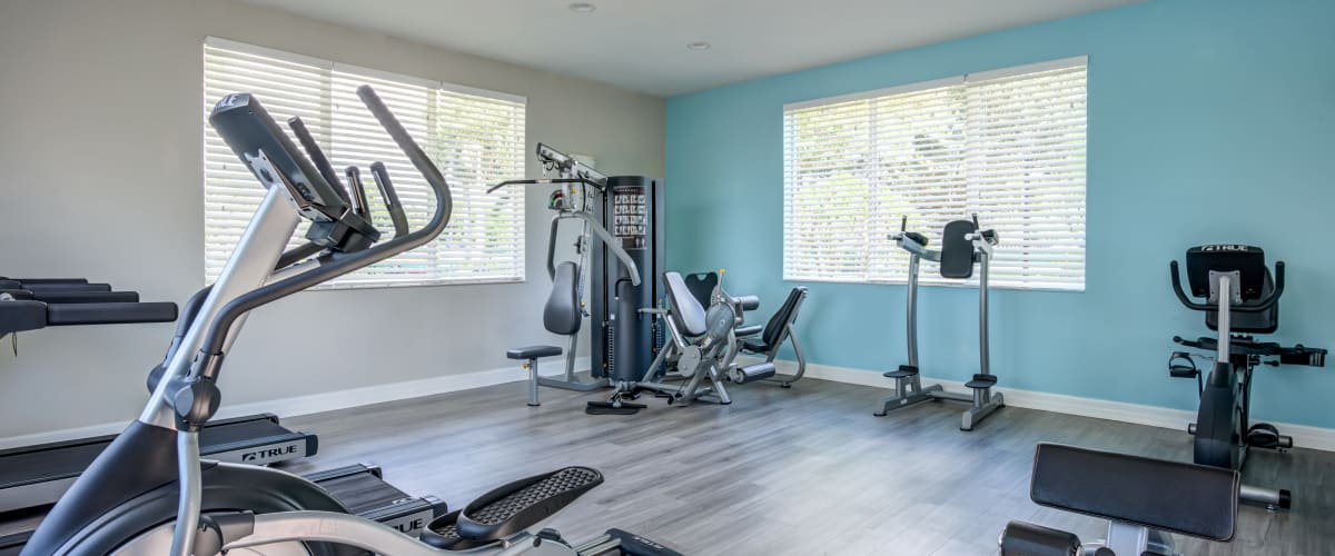 The fitness center with large windows at Cedar Grove Apartments in Miami Gardens, Florida