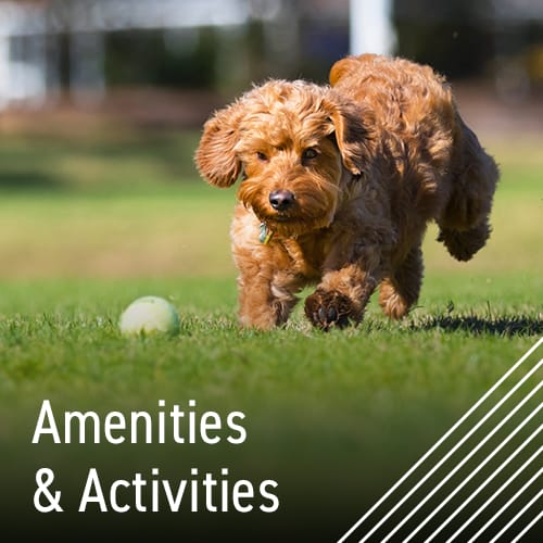 Check out our amenities at Maplewood Estates in Omaha, Nebraska