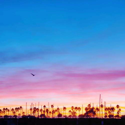 Boat harbor sunset at Portside Ventura Harbor in Ventura, California