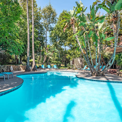 View a virtual tour of our swimming pool at Rancho Los Feliz in Los Angeles, California