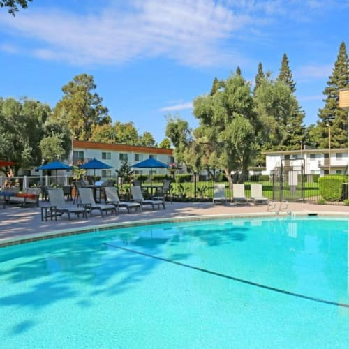 Resort-style pool at The Davenport in Sacramento, California