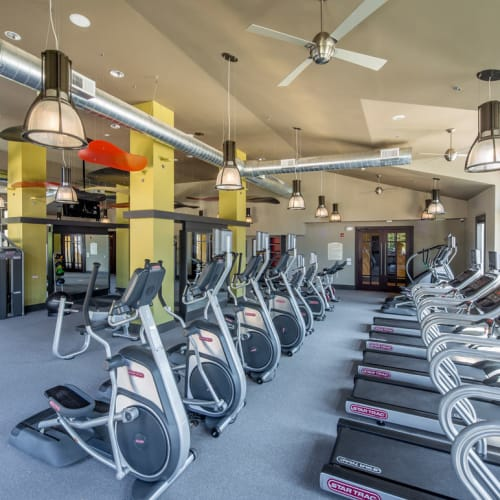 View our amenities at The Grove Somerset in Somerset, New Jersey