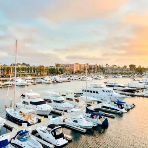 Peaceful morning at the marina at Marina Harbor in Marina del Rey, California