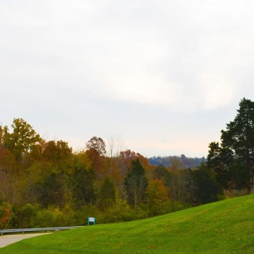 Open green space at Miamiview Apartments in Cleves, Ohio