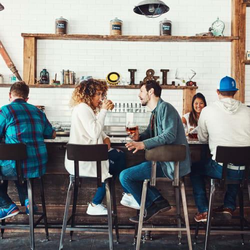 Friends chatting at a bar near Hawkins Meadow in Amherst, Massachusetts