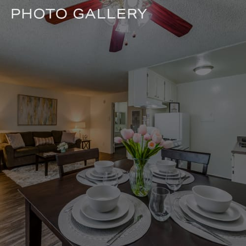 Click to view our photo gallery of The Enclave in Studio City, California