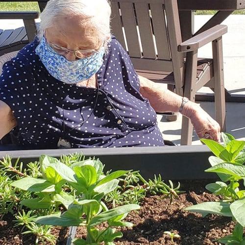 Resident gardening at Saunders House in Wahoo, Nebraska