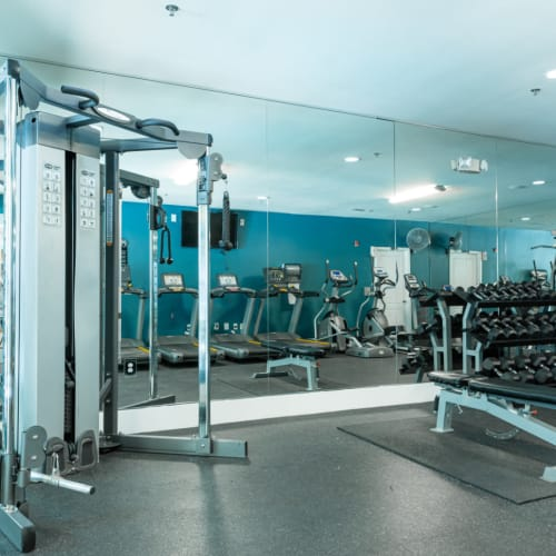 Weight assisted machine and free weights section of fitness room at Marquis at Texas Street in Dallas, Texas