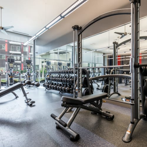 Assisted bench press station with free weights nearby at Marq on Burnet in Austin, Texas