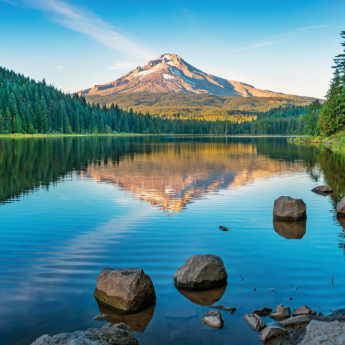 Oregon's Mount Hood reflected in a serene forest lake.