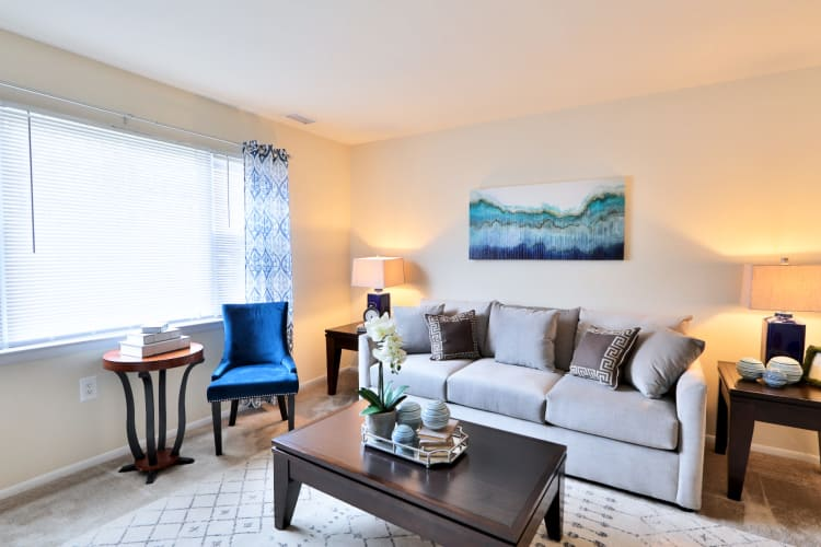 Our apartments in Baltimore, MD have a naturally well-lit living room