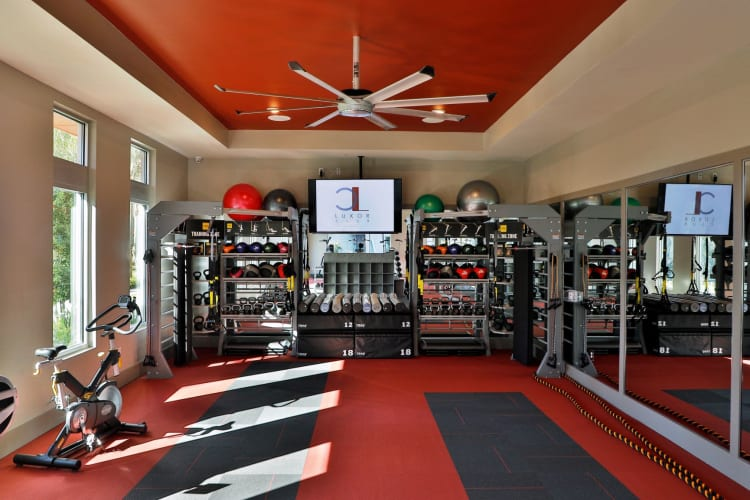 Fully equipped fitness center at Luxor Club in Jacksonville, Florida