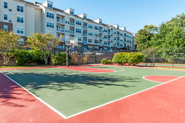 Basketball court at The Lena Luxury Residences in Raritan, New Jersey