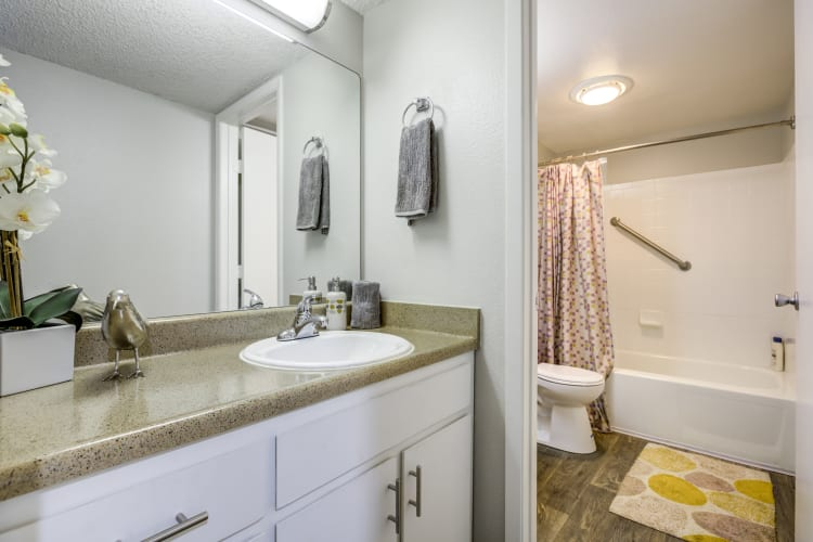 Large vanity mirror and granite countertop in a model home's bathroom at The Ranch at Bear Creek Apartments & Townhomes in Lakewood, Colorado