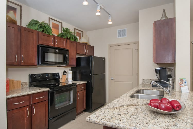 Beautiful wood cabinets and a spacious counter top in the kitchen of model home at Villas Tech Ridge in Pflugerville, Texas