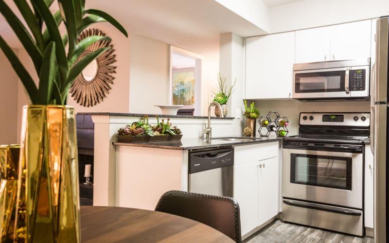 Kitchen area featuring stainless steel appliances at 4127 Arcadia in Phoenix, Arizona
