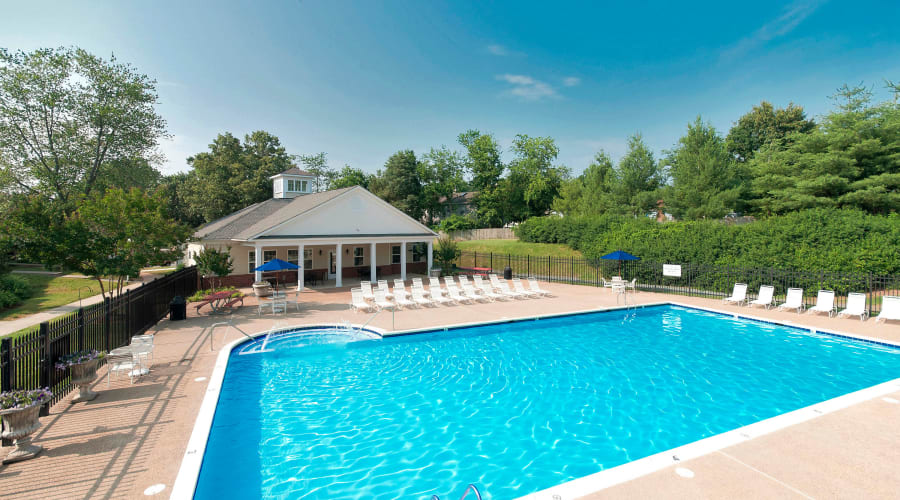 Beautiful resort-style swimming pool on a gorgeous day at North Woods in Charlottesville, Virginia