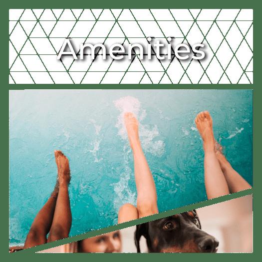 View Amenities at Siena Apartments in Plantation, Florida