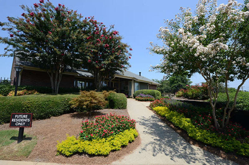 Professionally maintained landscaping outside the leasing center at The Everette at East Cobb in Marietta, Georgia