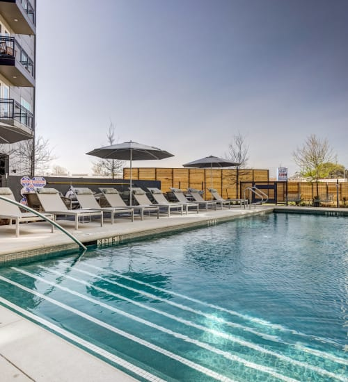 Swimming Pool at 44 South | Apartments in Austin, TX