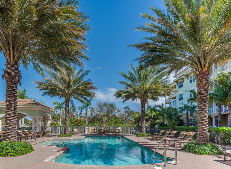 Resort-style swimming pool flanked by palm trees at Riverwalk Pointe in Jupiter, Florida