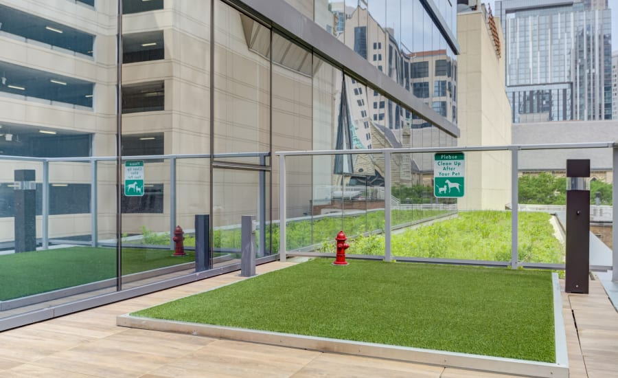 Outdoor dog run at Residences at 8 East Huron in Chicago, Illinois